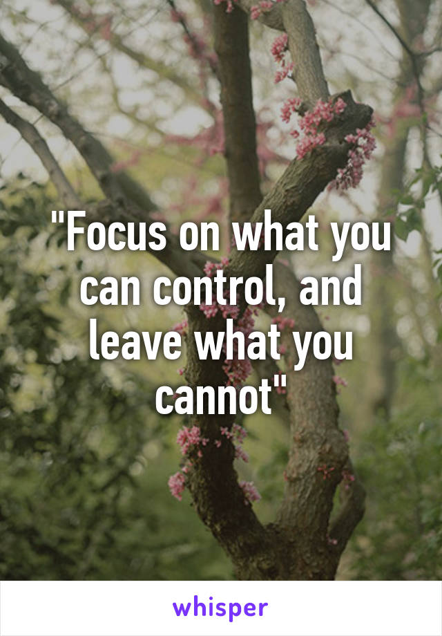 """""""Focus on what you can control, and leave what you cannot"""""""