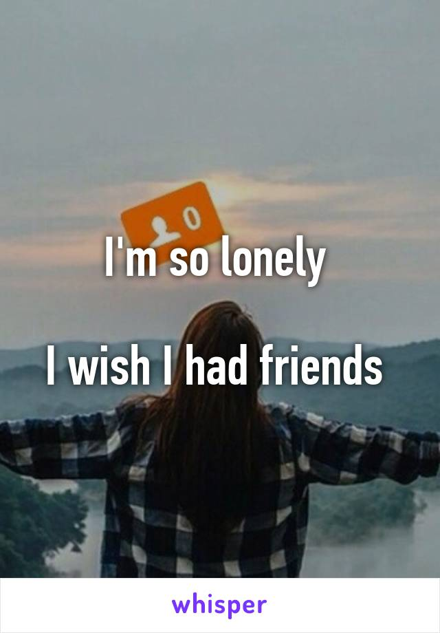 I'm so lonely   I wish I had friends