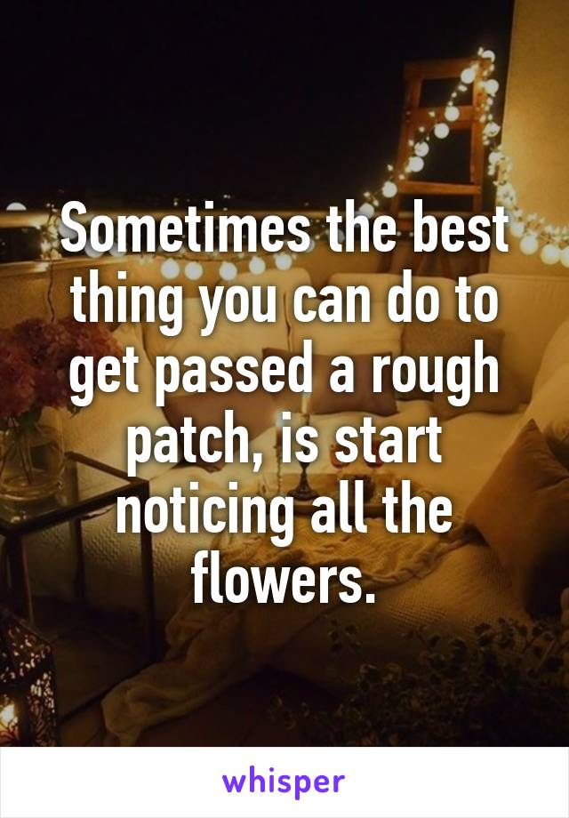 Sometimes the best thing you can do to get passed a rough patch, is start noticing all the flowers.