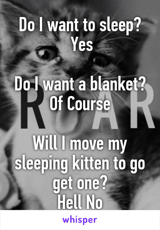 Do I want to sleep?  Yes  Do I want a blanket? Of Course  Will I move my sleeping kitten to go get one? Hell No