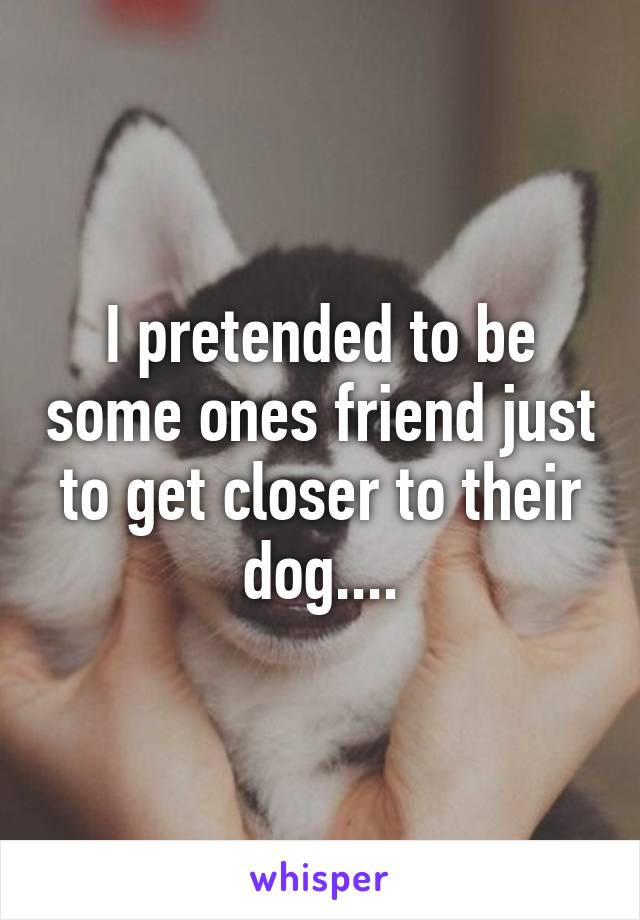 I pretended to be some ones friend just to get closer to their dog....