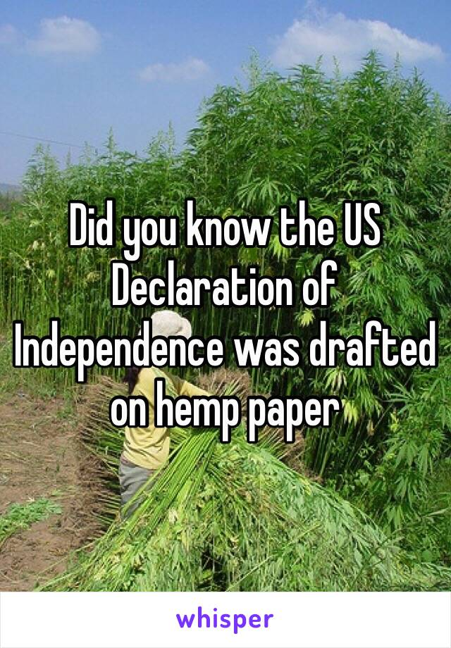 Did you know the US Declaration of Independence was drafted on hemp paper