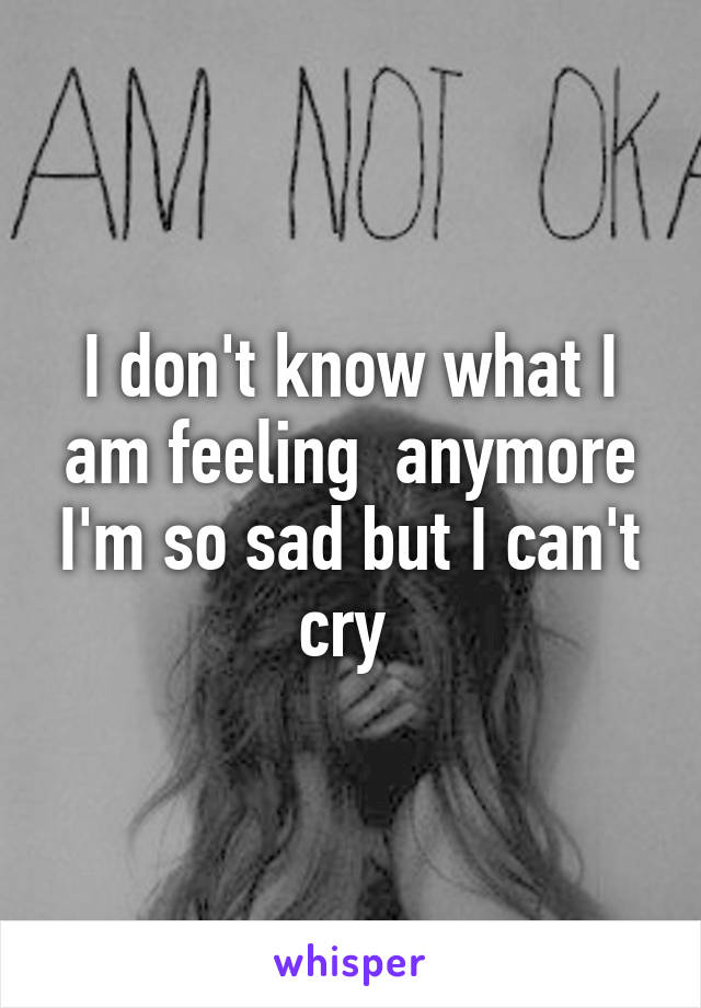 I don't know what I am feeling  anymore I'm so sad but I can't cry