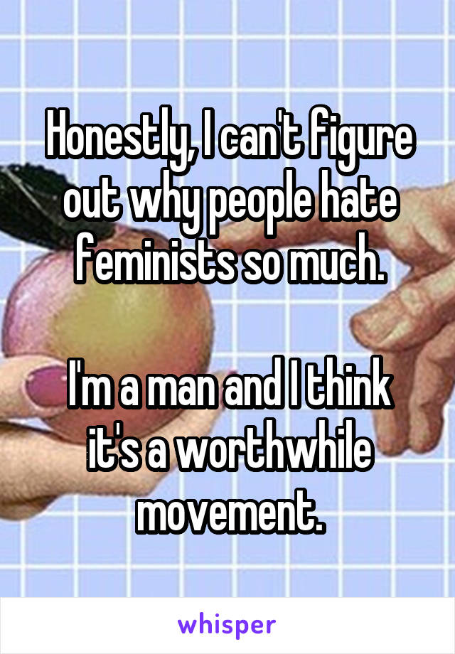 Honestly, I can't figure out why people hate feminists so much.  I'm a man and I think it's a worthwhile movement.