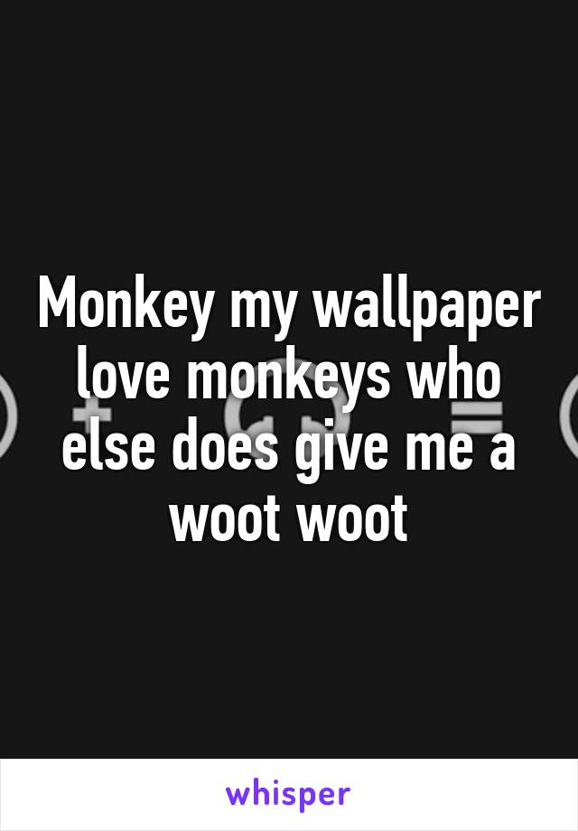 Monkey my wallpaper love monkeys who else does give me a woot woot