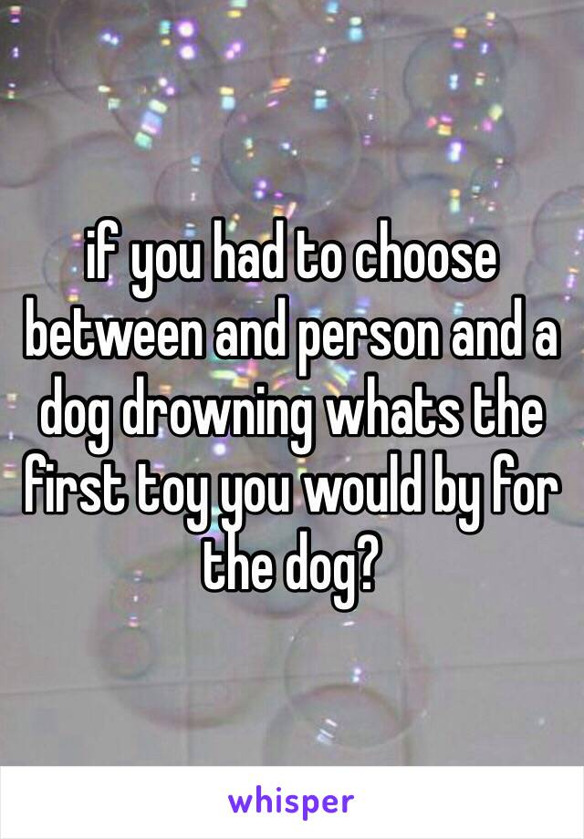 if you had to choose between and person and a dog drowning whats the first toy you would by for the dog?