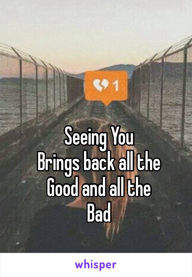 Seeing You  Brings back all the Good and all the Bad