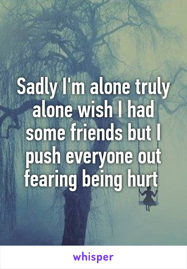 Sadly I'm alone truly alone wish I had some friends but I push everyone out fearing being hurt