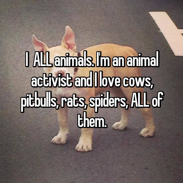 I 💗 ALL animals. I'm an animal activist and I love cows, pitbulls, rats, spiders, ALL of them. 😍