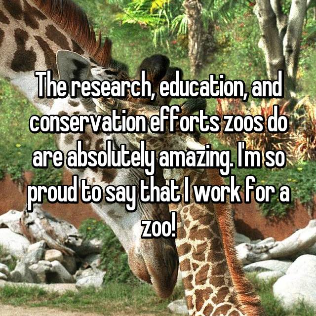 The research, education, and conservation efforts zoos do are absolutely amazing. I'm so proud to say that I work for a zoo!