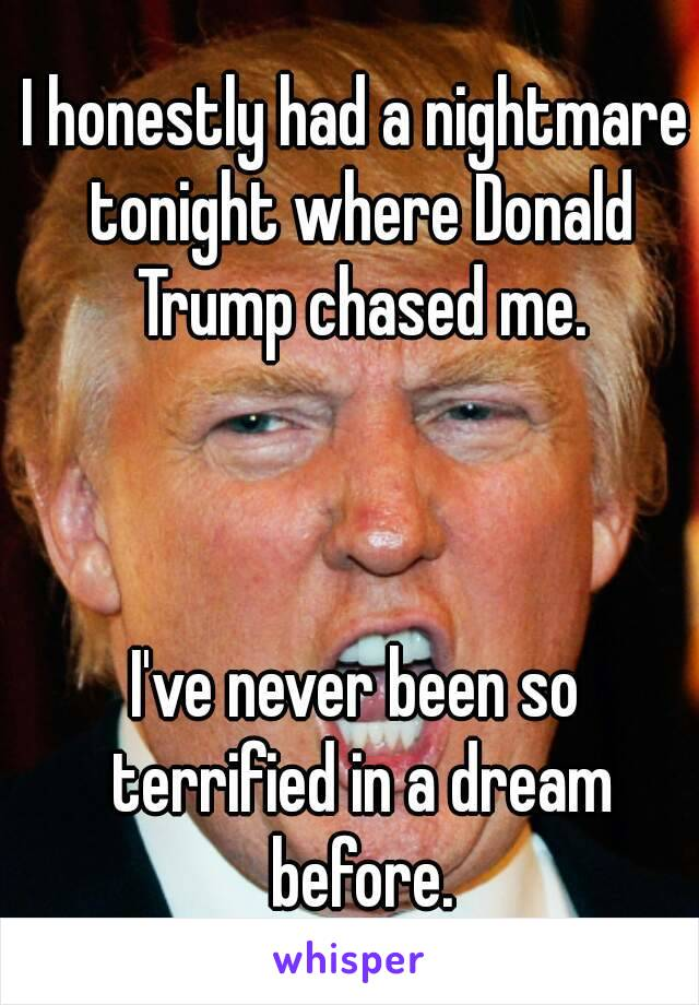 I honestly had a nightmare tonight where Donald Trump chased me.    I've never been so terrified in a dream before.
