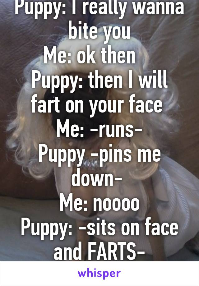Puppy: I really wanna bite you Me: ok then     Puppy: then I will fart on your face  Me: -runs- Puppy -pins me down-  Me: noooo Puppy: -sits on face and FARTS-