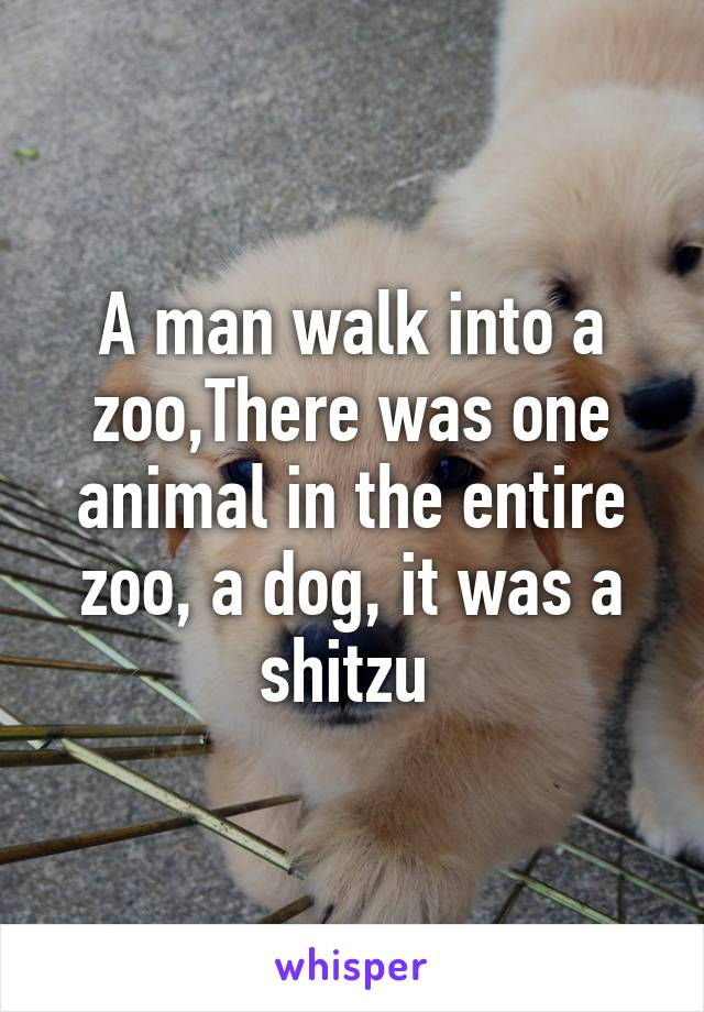 A man walk into a zoo,There was one animal in the entire zoo, a dog, it was a shitzu