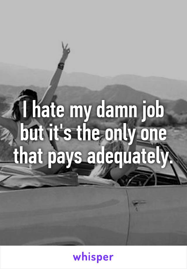 I hate my damn job but it's the only one that pays adequately.