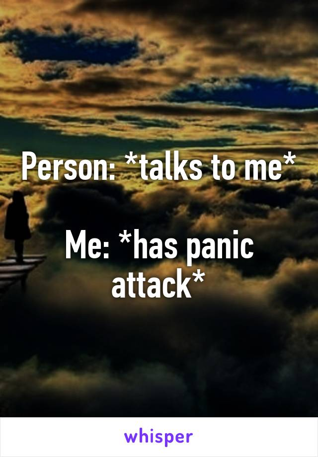 Person: *talks to me*  Me: *has panic attack*