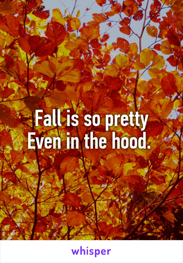 Fall is so pretty Even in the hood.