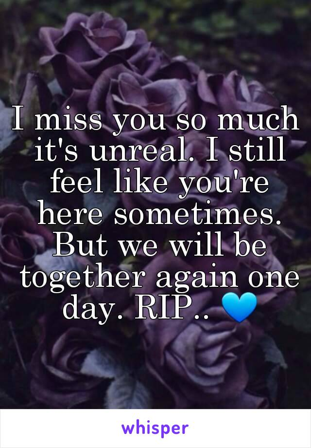 I miss you so much it's unreal. I still feel like you're here sometimes. But we will be together again one day. RIP.. 💙