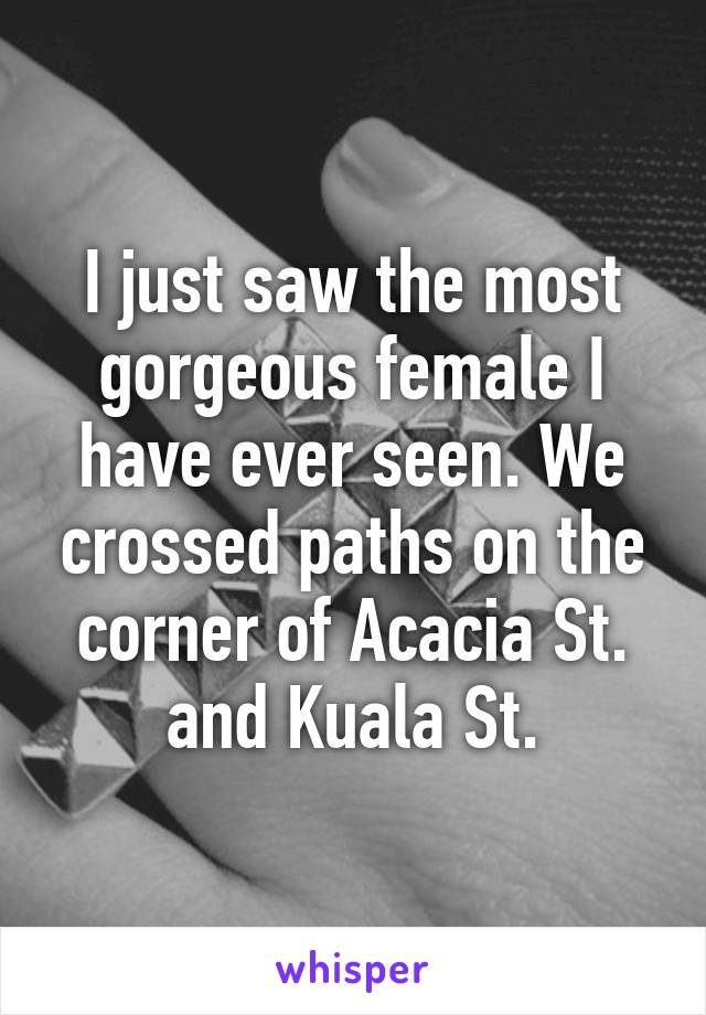 I just saw the most gorgeous female I have ever seen. We crossed paths on the corner of Acacia St. and Kuala St.