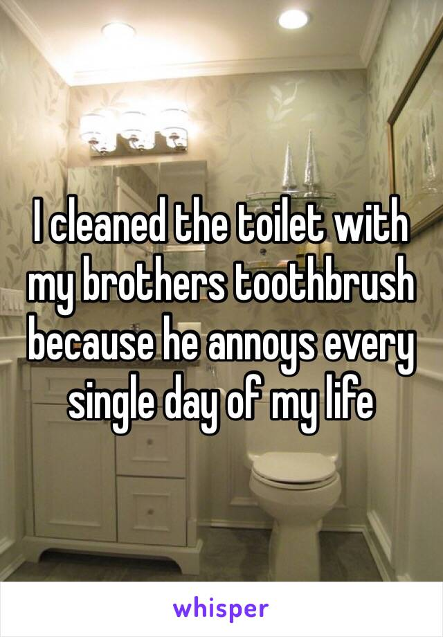 I cleaned the toilet with my brothers toothbrush because he annoys every single day of my life