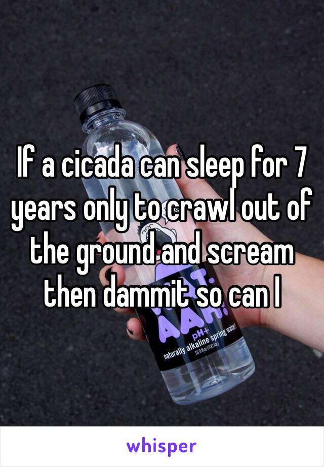 If a cicada can sleep for 7 years only to crawl out of the ground and scream then dammit so can I