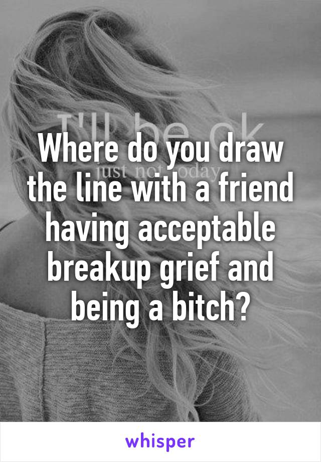 Where do you draw the line with a friend having acceptable breakup grief and being a bitch?