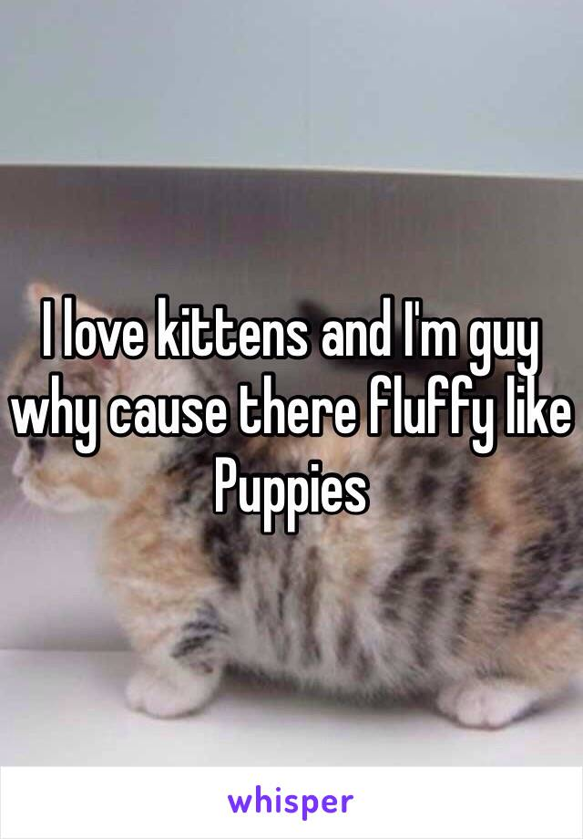 I love kittens and I'm guy why cause there fluffy like Puppies