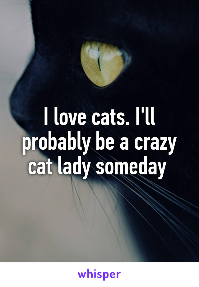 I love cats. I'll probably be a crazy cat lady someday
