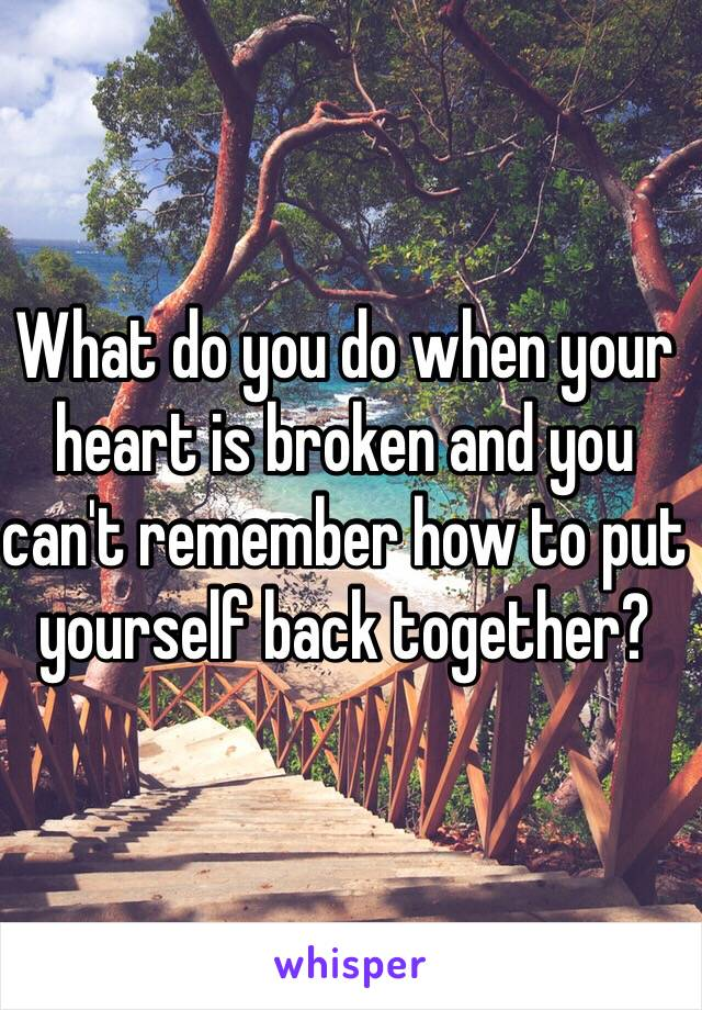 What do you do when your heart is broken and you can't remember how to put yourself back together?