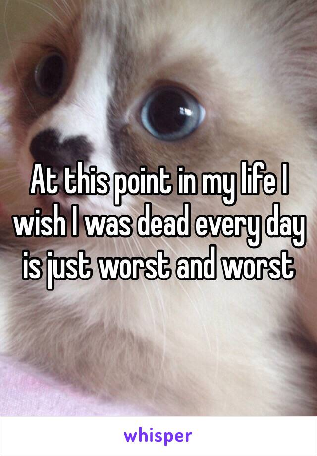 At this point in my life I wish I was dead every day is just worst and worst