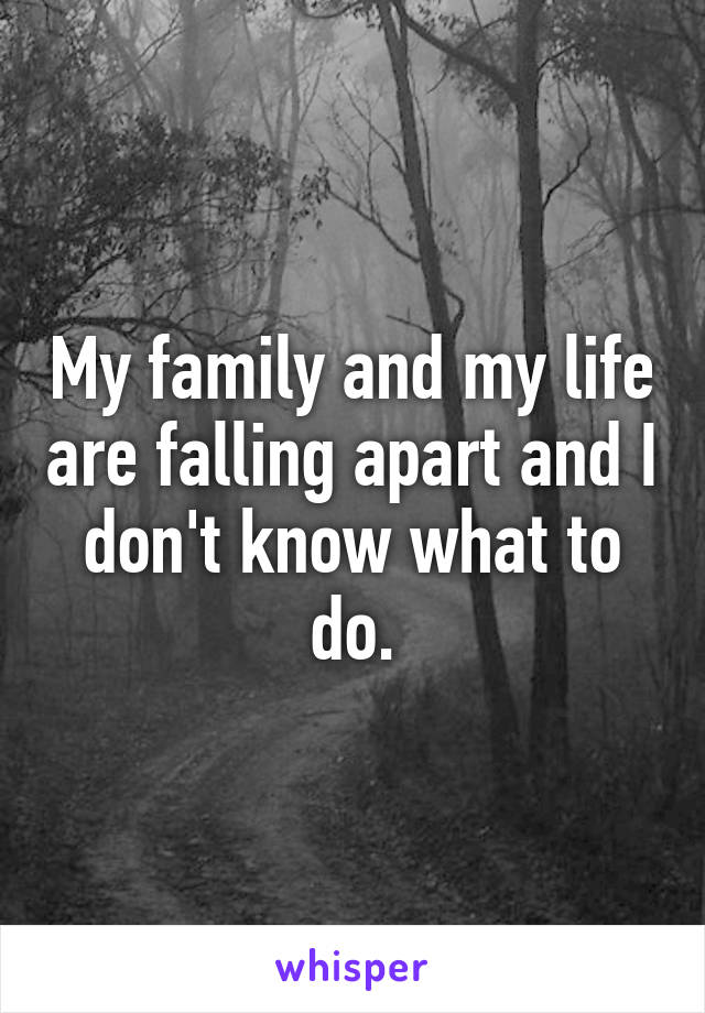 My family and my life are falling apart and I don't know what to do.