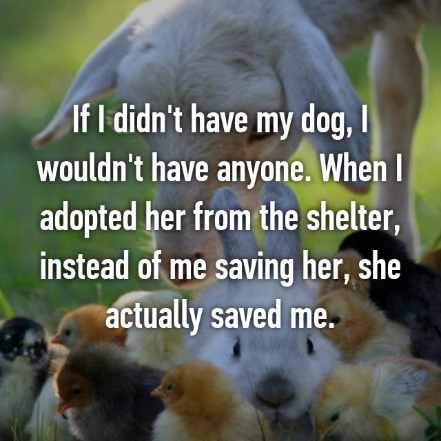 If I didn't have my dog, I wouldn't have anyone. When I adopted her from the shelter, instead of me saving her, she actually saved me.