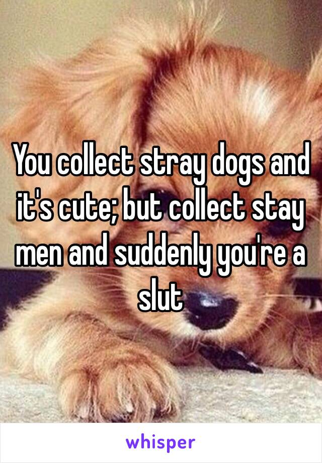 You collect stray dogs and it's cute; but collect stay men and suddenly you're a slut