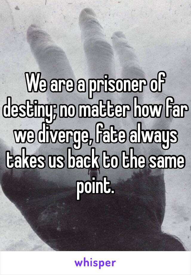 We are a prisoner of destiny; no matter how far we diverge, fate always takes us back to the same point.