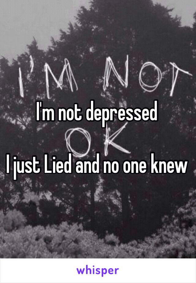I'm not depressed   I just Lied and no one knew