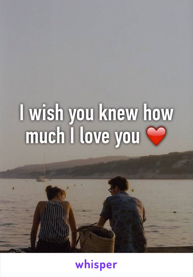 I wish you knew how much I love you ❤️