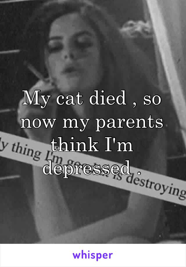 My cat died , so now my parents think I'm depressed .