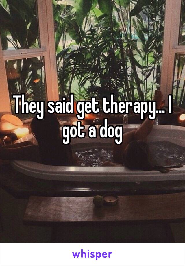 They said get therapy... I got a dog