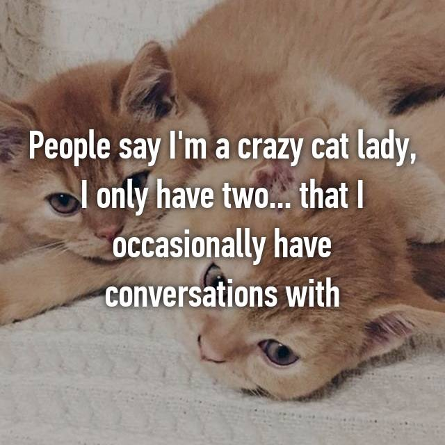 People say I'm a crazy cat lady, I only have two... that I occasionally have conversations with
