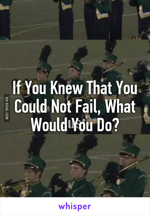 If You Knew That You Could Not Fail, What Would You Do?