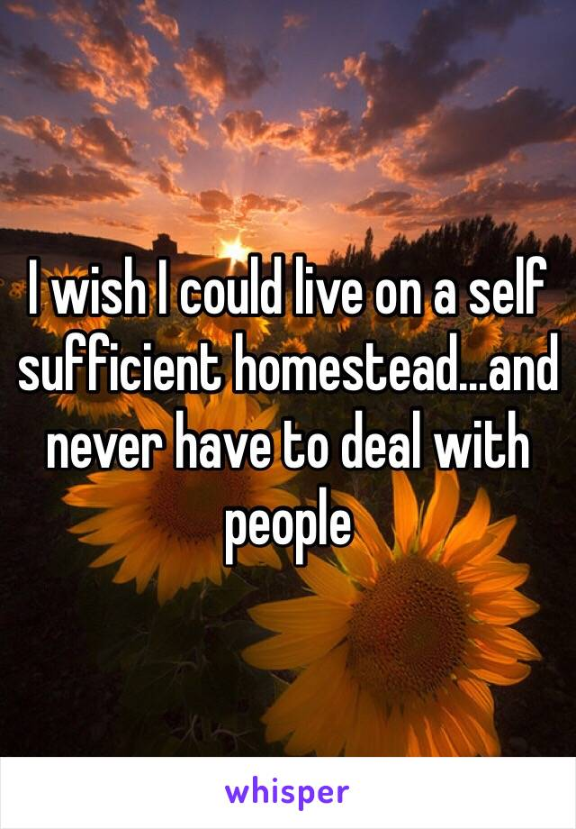 I wish I could live on a self sufficient homestead...and never have to deal with people