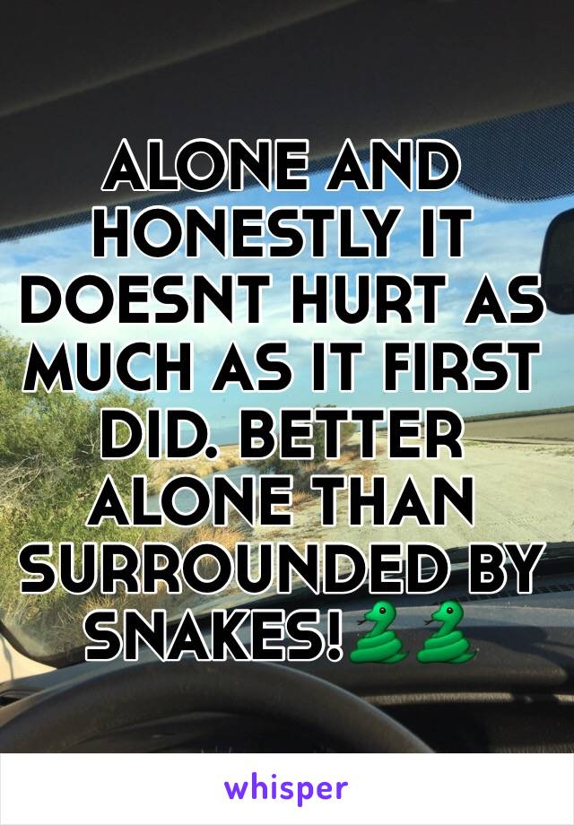 ALONE AND HONESTLY IT DOESNT HURT AS MUCH AS IT FIRST DID. BETTER ALONE THAN SURROUNDED BY SNAKES!🐍🐍