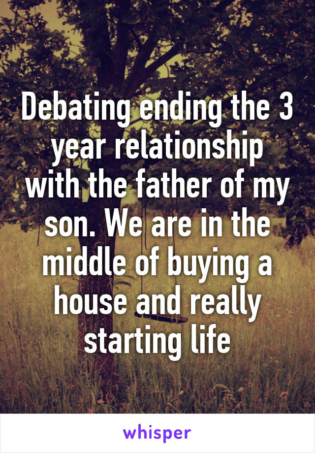 Debating ending the 3 year relationship with the father of my son. We are in the middle of buying a house and really starting life