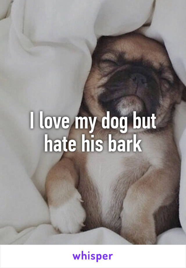 I love my dog but hate his bark