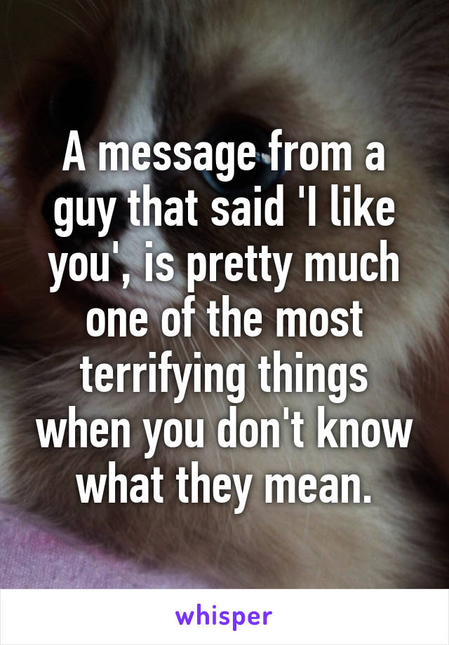 A message from a guy that said 'I like you', is pretty much one of the most terrifying things when you don't know what they mean.