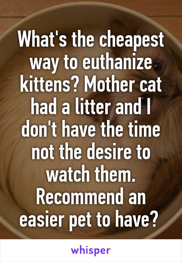 What's the cheapest way to euthanize kittens? Mother cat had a litter and I don't have the time not the desire to watch them. Recommend an easier pet to have?