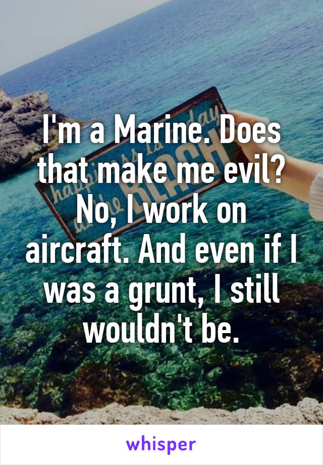 I'm a Marine. Does that make me evil? No, I work on aircraft. And even if I was a grunt, I still wouldn't be.