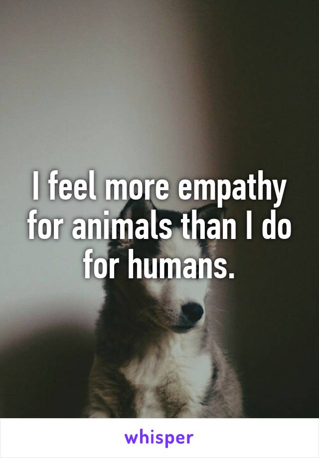 I feel more empathy for animals than I do for humans.