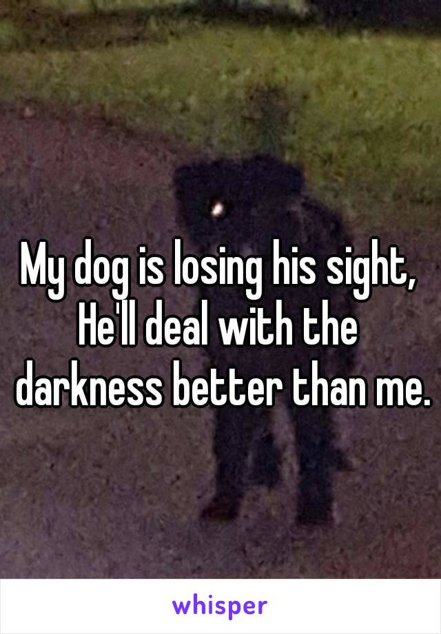 My dog is losing his sight, He'll deal with the darkness better than me.