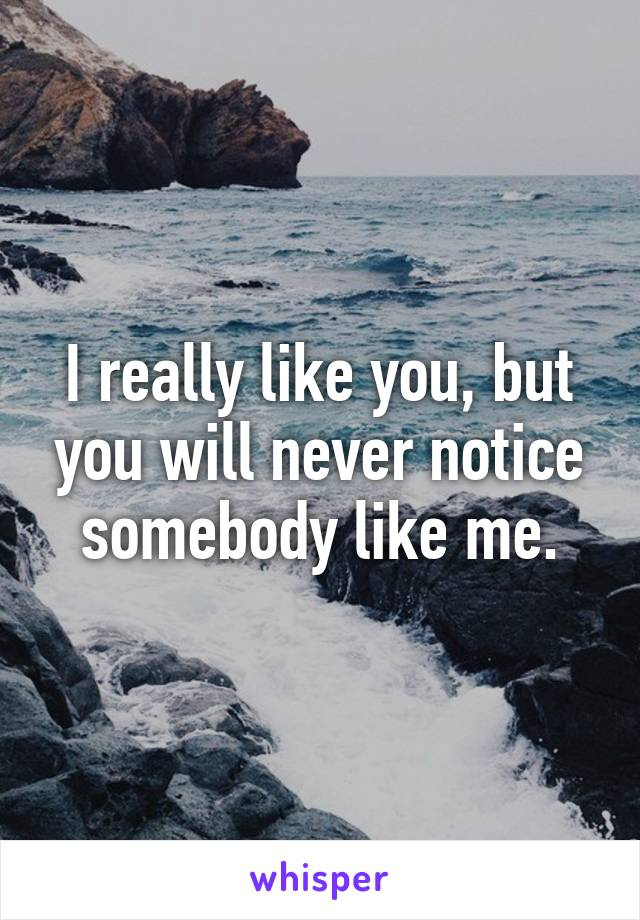 I really like you, but you will never notice somebody like me.