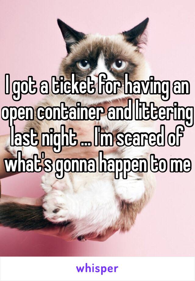 I got a ticket for having an open container and littering last night ... I'm scared of what's gonna happen to me